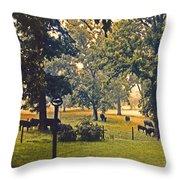 Morning Graze Throw Pillow by Doug Kreuger