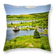 Newfoundland landscape Throw Pillow by Elena Elisseeva