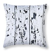 Old Painted Wood Abstract Throw Pillow by Elena Elisseeva