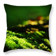 One Hundred Ways Throw Pillow by Rebecca Sherman