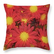 Patterned Petels Throw Pillow by Debbie Portwood