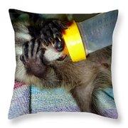 Peek A Boo Throw Pillow by Michelle Milano