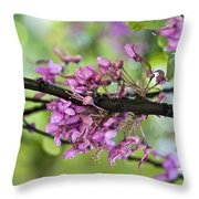 Pink flowers of the Love Tree Throw Pillow by Frank Tschakert