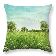 Queen anne's lace wildflowers Throw Pillow by Sandra Cunningham