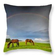 Rainbow Horses Throw Pillow by Evgeni Dinev