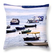 River Boats On Danube Throw Pillow by Elena Elisseeva