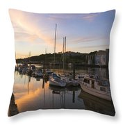 River Suir, From Millenium Plaza Throw Pillow by The Irish Image Collection