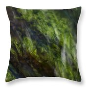 Sea Weed Throw Pillow by Michael Mogensen