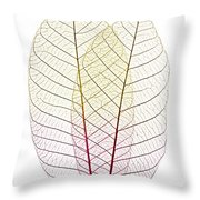 Skeleton Leaves Throw Pillow by Elena Elisseeva