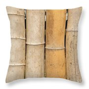 Straight Bamboo Poles Throw Pillow by Yali Shi