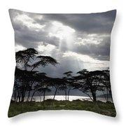 Sunlight Shining Through The Dark Throw Pillow by David DuChemin