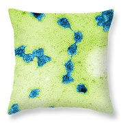 Tem Of Rna Throw Pillow by Omikron