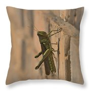 The Visitor Throw Pillow by Kim Henderson