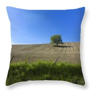 Tree  Throw Pillow by Bernard Jaubert