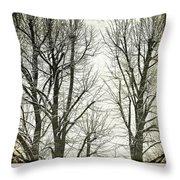 Winter Trees Throw Pillow by Silvia Ganora