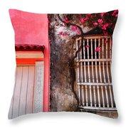 10b-30b Throw Pillow by Skip Hunt