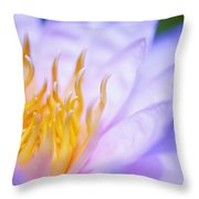 Throw Pillow by Kicka Witte