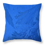 Frost On A Windowpane Throw Pillow by Thomas R Fletcher