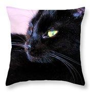 Green Eyes Throw Pillow by Art Dingo