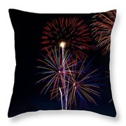20120706-dsc06457 Throw Pillow by Christopher Holmes
