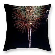 20120706-dsc06462 Throw Pillow by Christopher Holmes