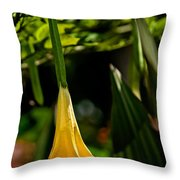 20120915-dsc09868 Throw Pillow by Christopher Holmes