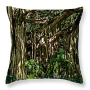 20120915-dsc09877 Throw Pillow by Christopher Holmes