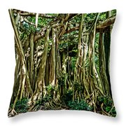 20120915-dsc09882 Throw Pillow by Christopher Holmes