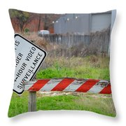 24 Hour Surveillance Throw Pillow by Nikki Marie Smith