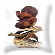 Dried Pieces Of Vegetables.  Throw Pillow by Bernard Jaubert