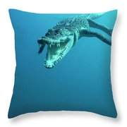 Saltwater Crocodile Crocodylus Porosus Throw Pillow by Mike Parry