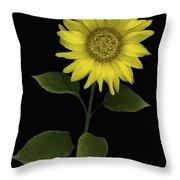 Sunflower Throw Pillow by Deddeda