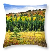 Fall Forest Throw Pillow by Elena Elisseeva