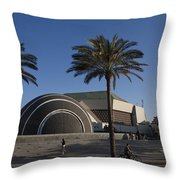 The Exterior Of The Famous Library Throw Pillow by Taylor S. Kennedy