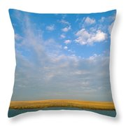 Untitled Throw Pillow by James P. Blair
