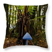 A Blue Mushroom, Enteloma Hochstetteri Throw Pillow by Bill Hatcher