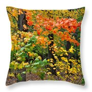 A Blustery Autumn Day Throw Pillow by Frozen in Time Fine Art Photography