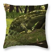 A Close-up Of A Three Foot Long Throw Pillow by Walter Myers