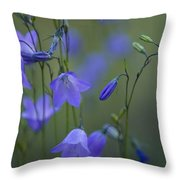 A Close Up Of Mountain Hairbells Dietes Throw Pillow by Ralph Lee Hopkins