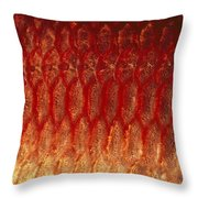 A Close View Of The Scales Throw Pillow by Bill Curtsinger