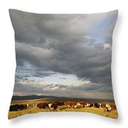 A Cloud-filled Sky Over A Yakima Valley Throw Pillow by Sisse Brimberg