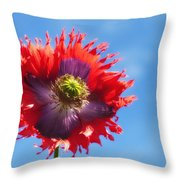 A Colorful Flower With Red And Purple Throw Pillow by John Short