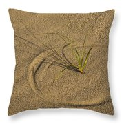 A Compass In The Sand Throw Pillow by Susan Candelario