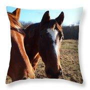 a cowboys best friend Throw Pillow by Robert Margetts