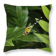 A Dragonfly Resting On A Leaf Throw Pillow by George Grall