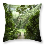 A Flooded Path At Manoa Falls Throw Pillow by Stacy Gold