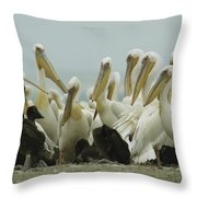 A Group Of Eastern White Pelicans Throw Pillow by Klaus Nigge