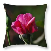 A Knockout Rose Throw Pillow by Skip Willits