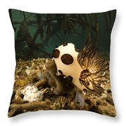A Large Nudibranch Feeds On A Sponge Throw Pillow by Tim Laman