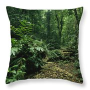 A Lush Woodland View In Papua New Throw Pillow by Klaus Nigge